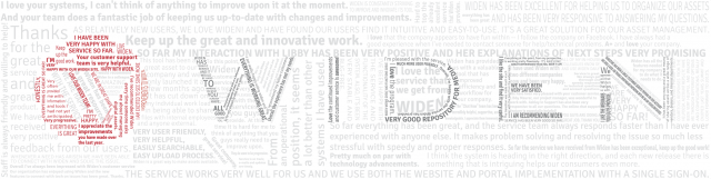 "This Widen logo is made up of 141 comments from our 2013 Customer Satisfaction Survey, 10 of which include the word ""love"""