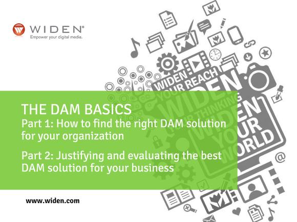The DAM Basics