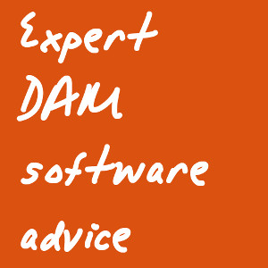 Expert DAM software advice