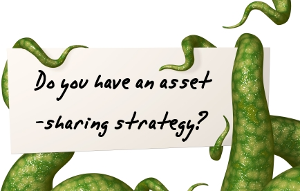 Do you have an asset-sharing strategy?