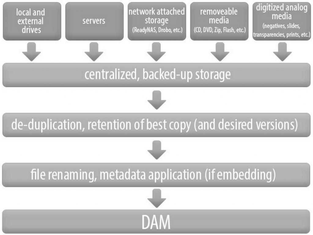 DAM Software & Migrating Digital Assets