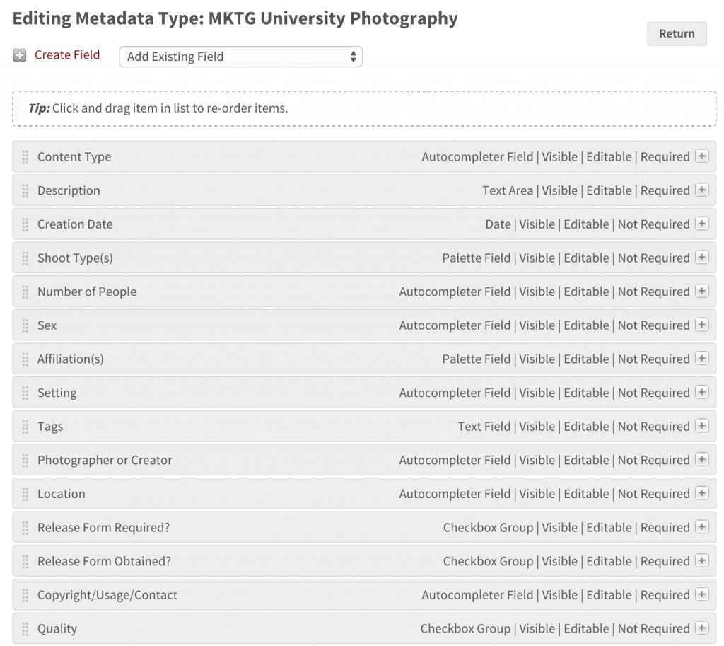 DAM System Metadata Types