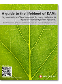 A guide to the lifeblood of DAM: Key concepts and best practices for using metadata in digital asset management systems