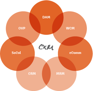 The Widen Version of the Customer Experience Technology Ecosystem
