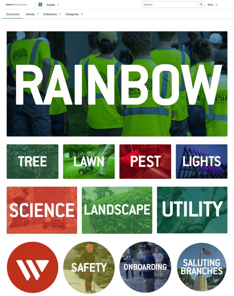 Blog_Rainbow Tree Dashboard_Nov 2020