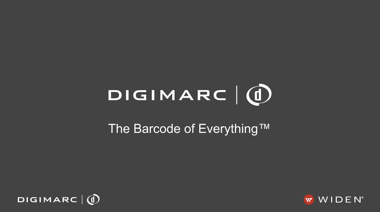 Digimarc Digital Watermark DAM Software.png