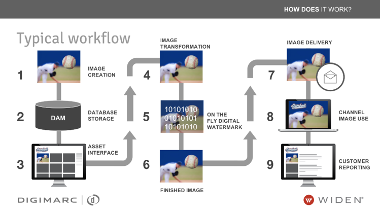 Digital Watermark & Rights Management Workflow.png