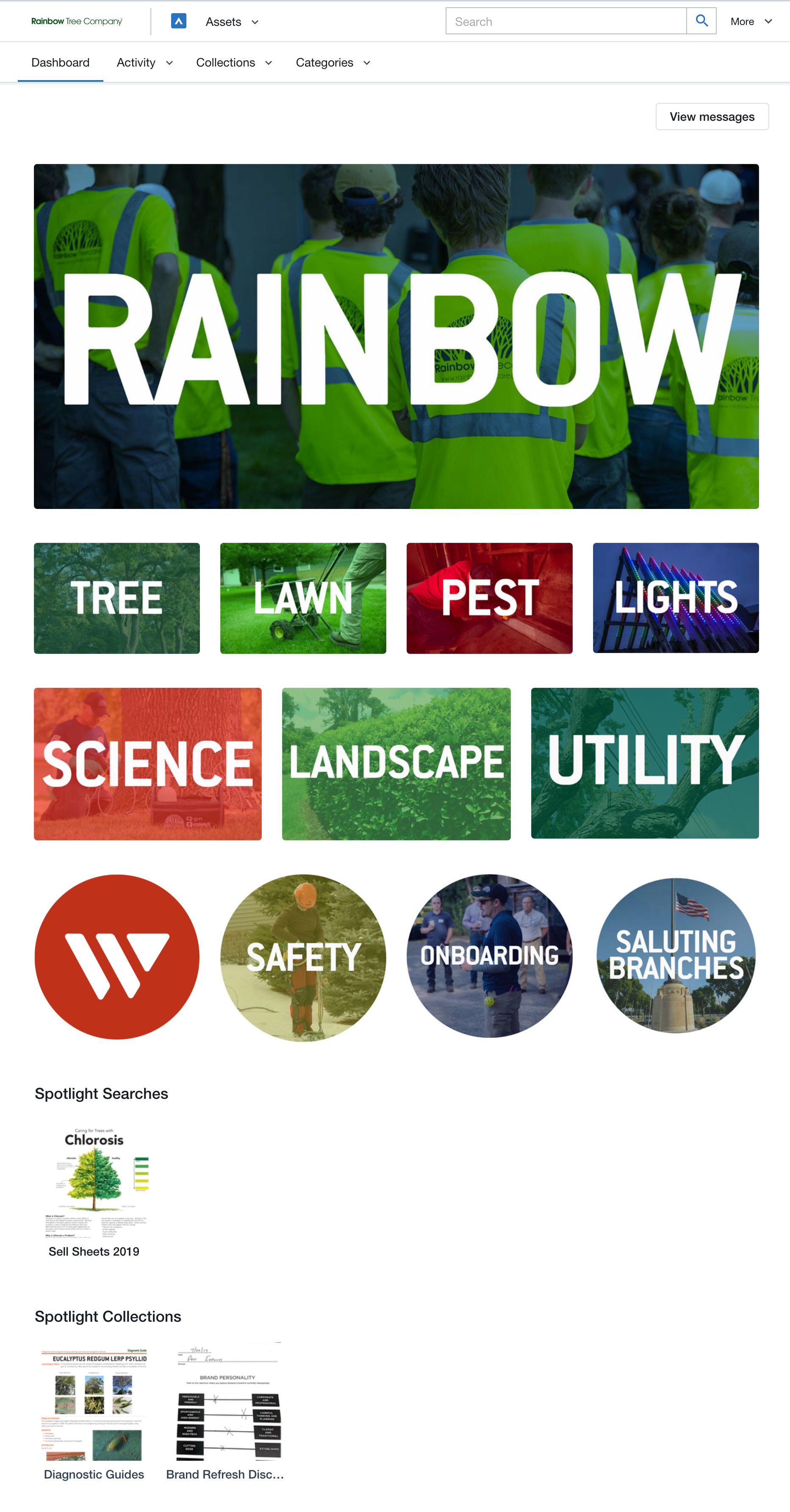 Rainbow Tree's Widen Collective dashboard.
