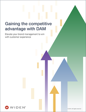 Gaining-the-competitive-advantage-with-DAM