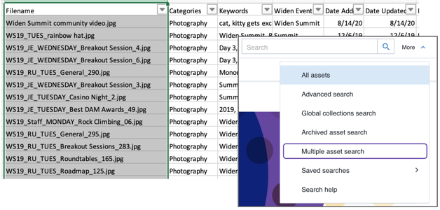 Screen Shot of copy filenames and pasting them into the multiple asset search field