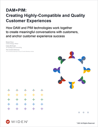 TCA-DAM-PIM-Creating-Highly-Compatible-and-Quality-Customer-Experiences-Cover-2