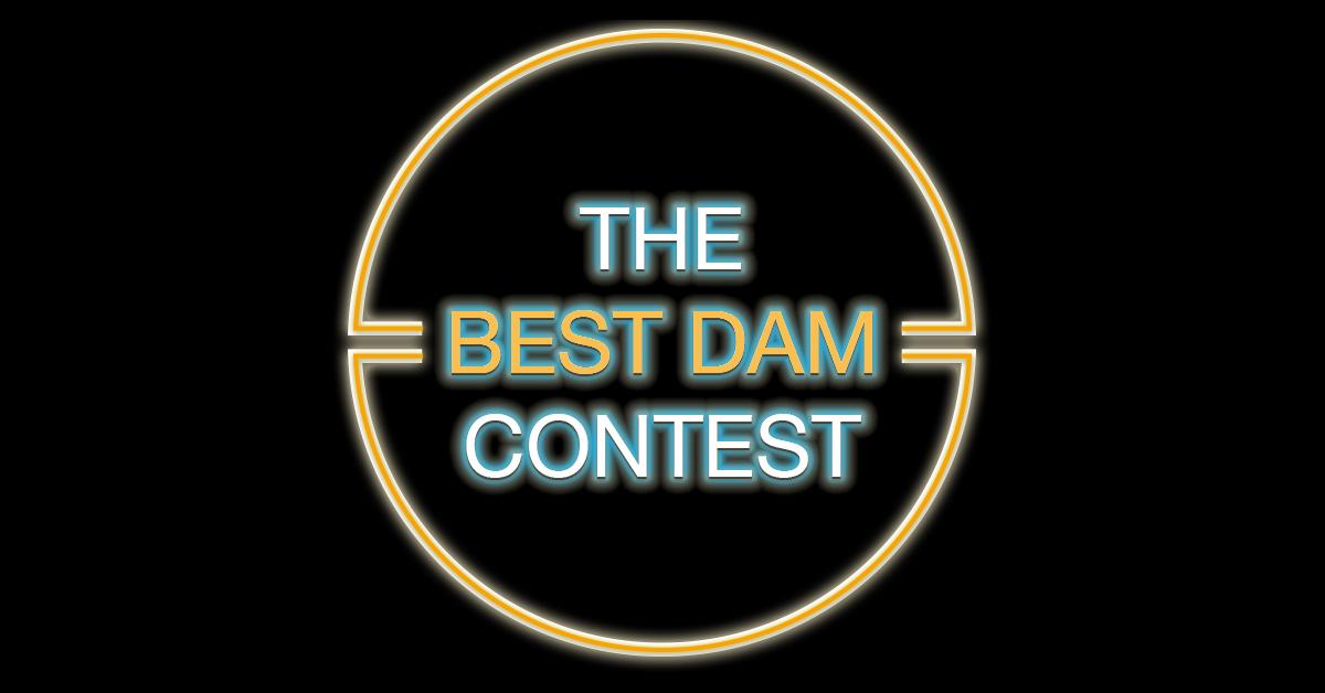 The Best DAM Contest Logo