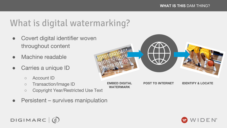 What is Digital Watermarking.png