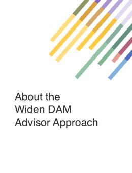 about the Widen DAM advisor approach