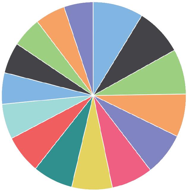 DAM Software Analytics Pie Chart