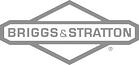 Digital Asset Management Customer Briggs and Stratton