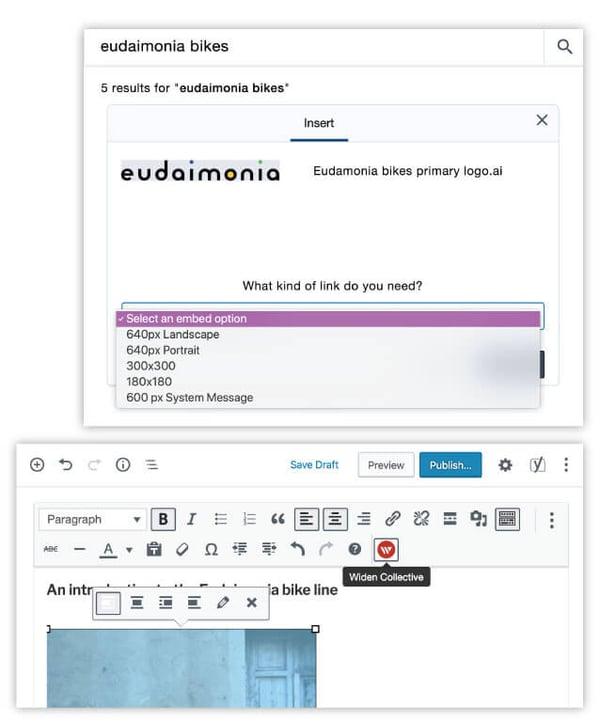 Wordpress and digital asset management plugin screenshots