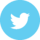 Twitter-Disc-Icon
