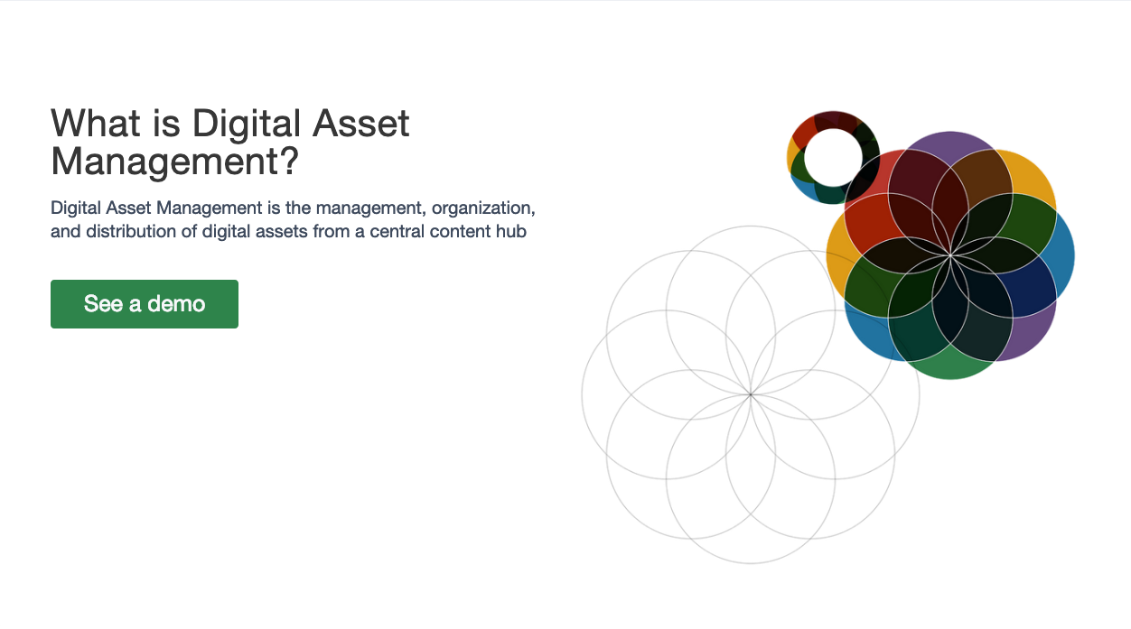 What is Digital Asset Management (DAM)? | Widen